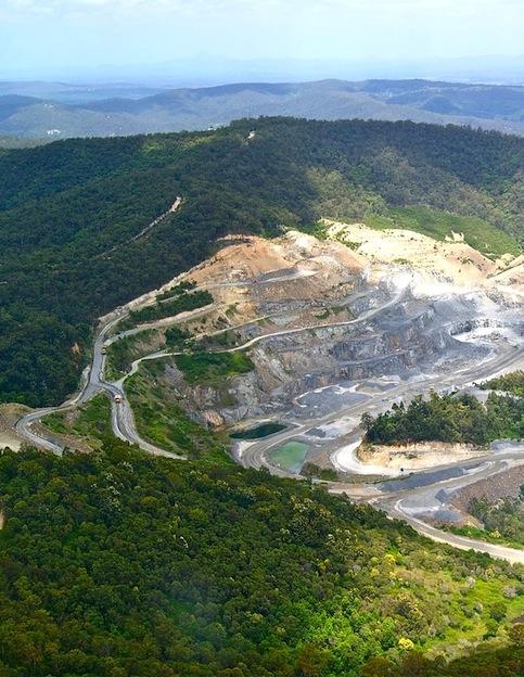 deforestacion_gorilas